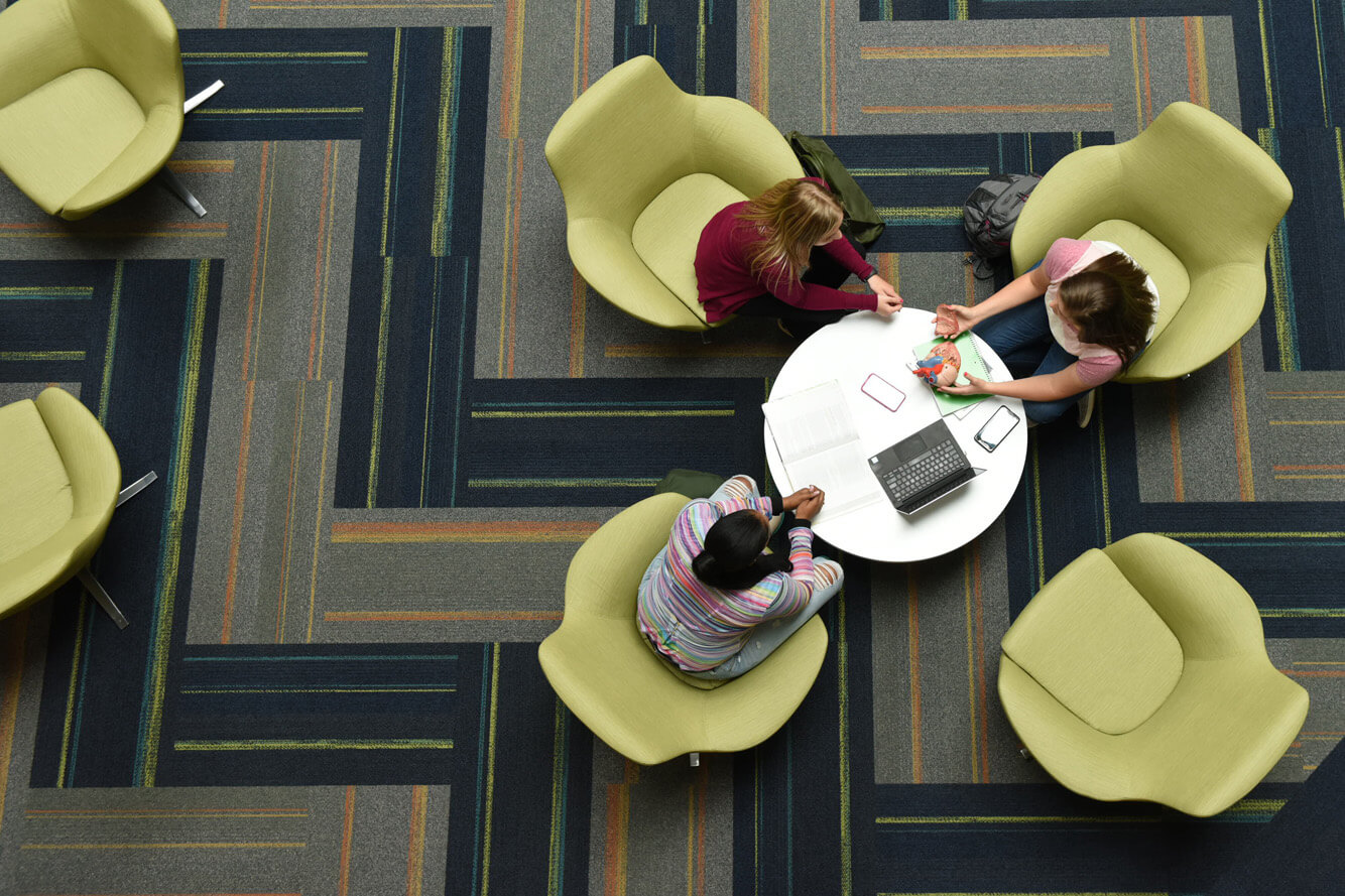 Students studying in learning commons
